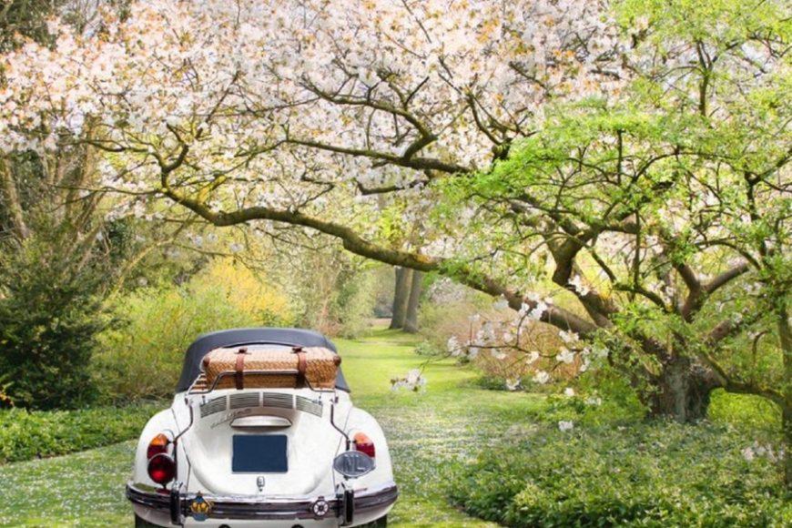 Wiosenny przegląd samochodu – za darmo!